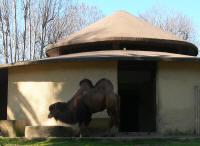 zoologiske museum københavn zoo rødovre